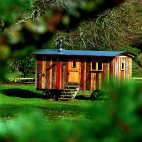 La « Tiny House » ou micro-maison : le phénomène qui fait fureur dans l'immobilier.